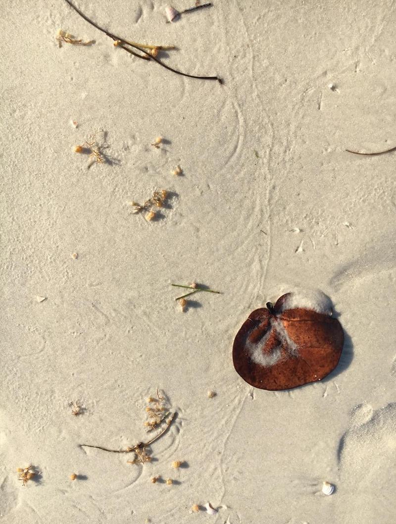 Beach Hiku 2