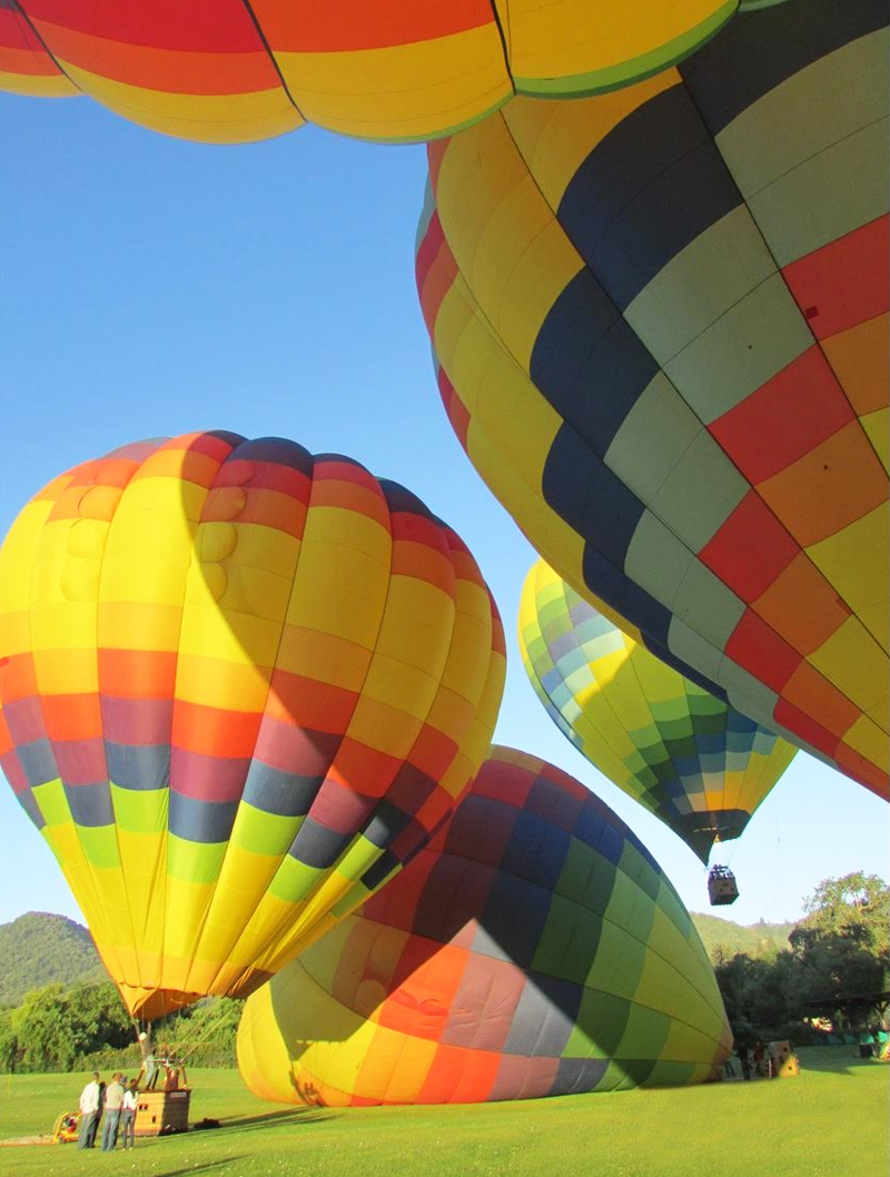Napa Balloons 4