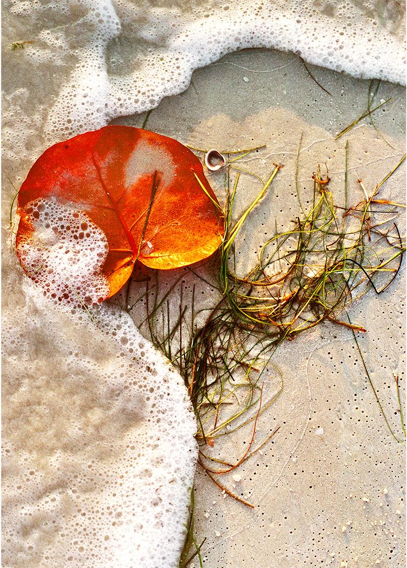 Beach Art 2