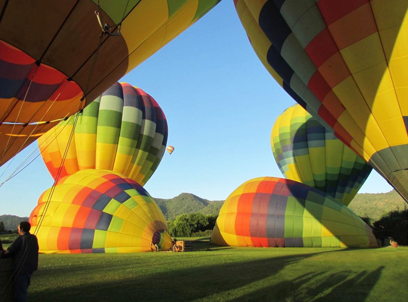 Napa Balloons 3