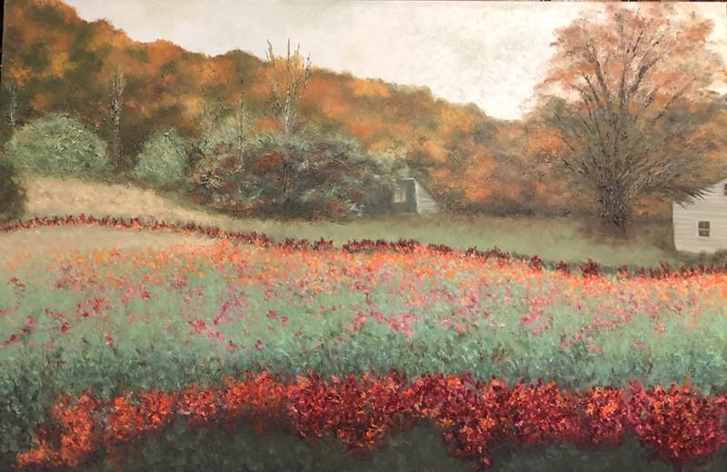 Flower Field Vermont